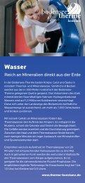 09-07-16_flyer_wissenschafts-sommer 2009_din lang.indd