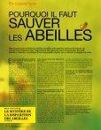 Les Abeilles ONT LE bourdon - Arte - Page 4