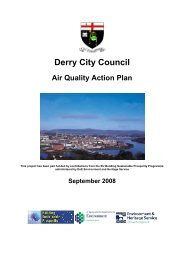 Final Action Plan 09 08 08 - BV - Northern Ireland Air