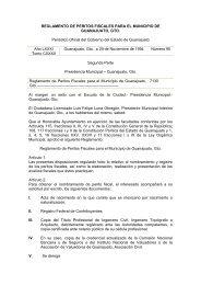 Reglamento de Peritos Fiscales para el Municipio de Guanajuato ...