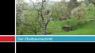 PRÄSENTATION IM BREITBILDFORMAT - Albrecht Schützinger