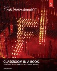 0321927850_flashprocc_cib_instructornotes-2