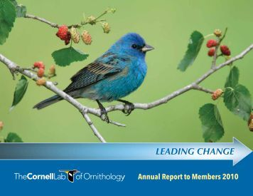 [PDF] Annual Report to Members 2010 - Cornell Lab of Ornithology