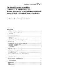 Forslagsstillers saksfremstilling Planforslag til offentlig ettersyn ...