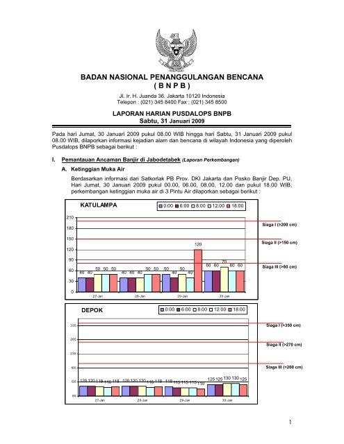 Laporan Harian 31 Januari 2009 - BNPB