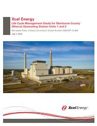 Xcel Energy Life Cycle Management Study for ... - Star Tribune