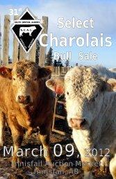 to download pdf file - Charolais Banner
