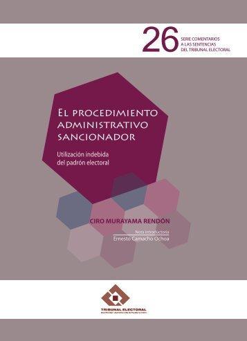 El procedimiento administrativo sancionador. Utilización indebida ...