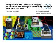 Comparative and Correlative imaging of Polymers and ... - Workcast