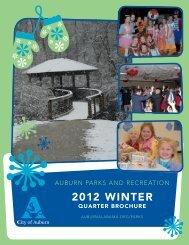 2012 Winter - City of Auburn