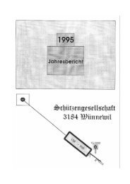Schiessbericht 1995 - Schützengesellschaft Wünnewil