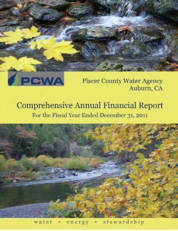 2011 Comprehensive Annual Financial Report (CAFR)