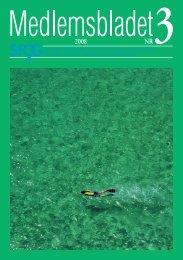 Medlemsblad 3 2008 - SFOG