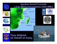 Tony Ribbink on behalf of many Agulhas Somali Currents Large ...