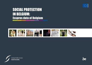 Social protection in Belgium: ESSPROS data 2008 (.pdf)