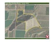 Nyssa Bird Hunting Ranch - Knipe Land Company