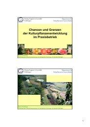 Chancen und Grenzen der Kulturpflanzenentwicklung im ...
