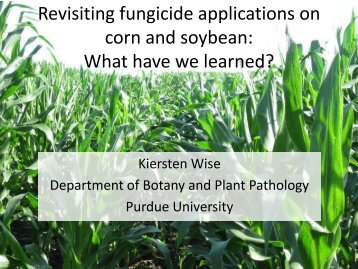 Wise_Revisitng Fungicide applications on corn and soybean.pdf