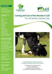 Calving and Care of the Newborn Calf - Animal Health Ireland