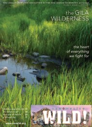 Download - New Mexico Wilderness Alliance