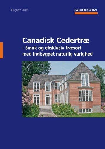 Canadisk Cedertræ - Bauhaus