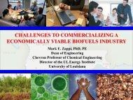 Biofuels Industry Commercialization - Mark Zappi - Lafayette ...