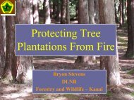 Protecting Tree Plantations from Fire - ctahr