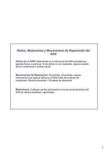 Daños, Mutaciones y Mecanismos de Reparación del ADN