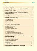 Initial Occupational Safety and Health Status Review - Page 2