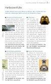 Das Stadtmagazin der FES | September ... - Rmb-frankfurt.de - Seite 7