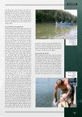 Es wallert am Rhein! - Seite 4