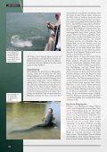 Es wallert am Rhein! - Seite 5