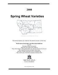 Spring Wheat Varieties - Department of Plant Sciences & Plant ...
