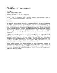 Lettuce Breeding, USDA-ARS - California Leafy Greens Research ...