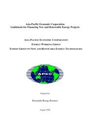 Asia-Pacific Economic Cooperation Guidebook for Financing New ...