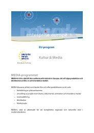 Kultur & Media - Enterprise Europe Network