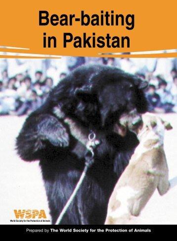 bear baiting in Pakistan - the Wildlife of Pakistan Website