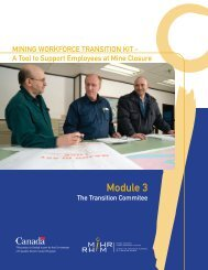 Module 3: The Transition Committee - MiHR
