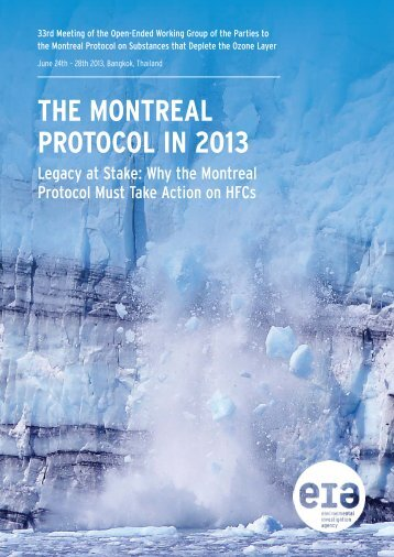 THE MONTREAL PROTOCOL IN 2013