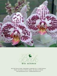 Domino Stars - Bock Bio Science GmbH