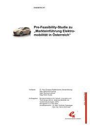 Pre-Feasibility-Studie zu Markteinf