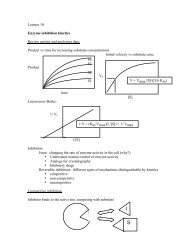 Lecture 10/18--More kinetics