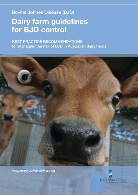 Dairy farm guidelines for BJD control