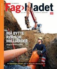 Fagbladet 2012 05 HEL