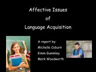 Affective Issues of Language Acquisition