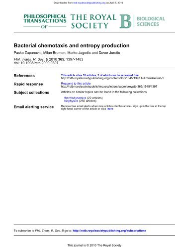 Bacterial chemotaxis and entropy production