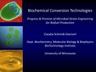Biochemical Conversion Technologies - Institute on the Environment ...
