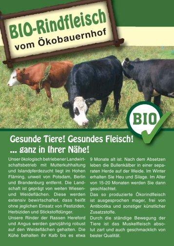 Flyer Bio Rindfleisch 28.01.2011_einbild_ok_ok_ok.indd