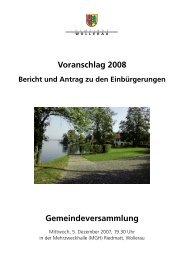 Voranschlag 2008 - Gemeinde Wollerau