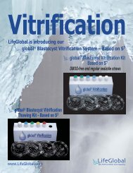 INTRODUCING THE global® Blastocyst Vitrification ... - IVFOnline.com